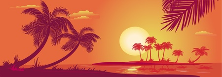 evening: Sunset with palms at sea