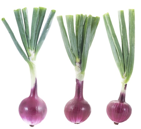 red onion: Red onions
