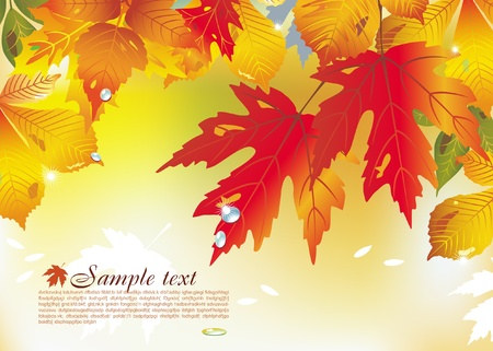 Background with autumn leaves Stock Vector - 9716688
