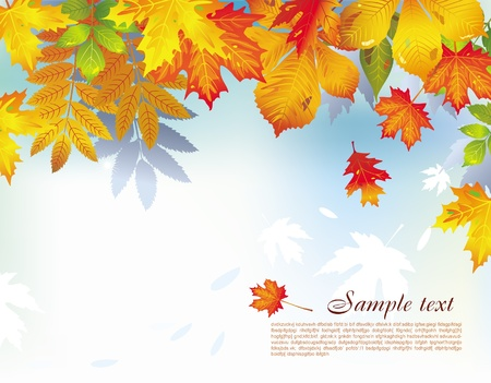 leaf fall: Background with autumn leaves Illustration