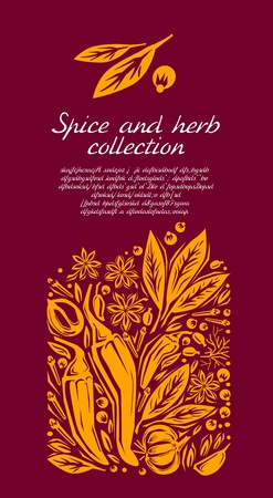 anise: Stylized illustration of a spice