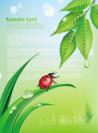 eco green: Natural background with ladybird Illustration