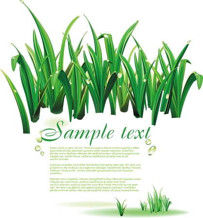 biologic: Template with green grass