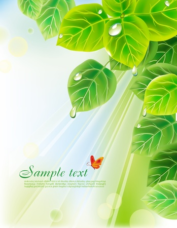 biologic: background with leaves