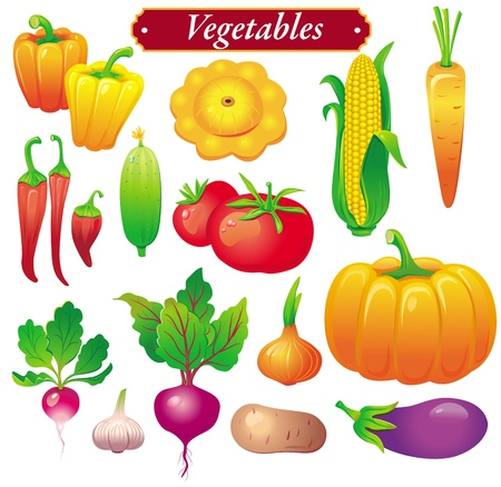 vegetables Stock Vector - 9929752