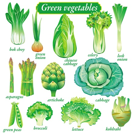 green cabbage: green vegetables