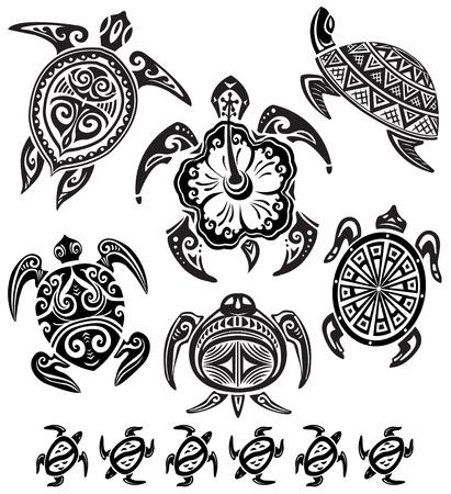 schildkroete: Dekorative Schildkr�ten Illustration
