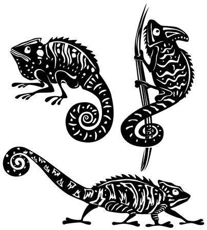 chameleon lizard: Camaleonte in bianco e nero