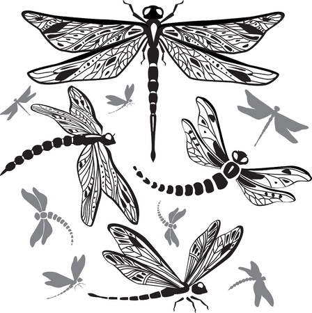 dragonfly wings: Set of decorative dragonflies