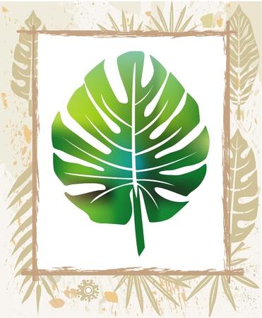 tropical border: Color leaf in a frame Illustration