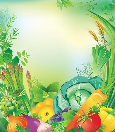 berenjena: Marco de verduras y hierbas Vectores