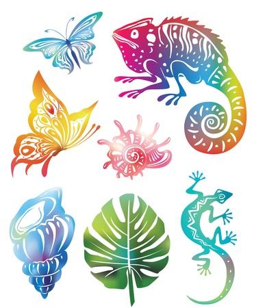 l�zard: Objets color�s de la nature