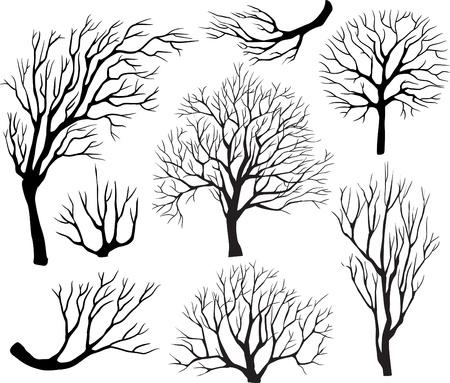 bomen zwart wit: Set van silhouetten van de bomen Stock Illustratie