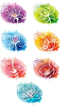 Set of banner with flower heads Vector