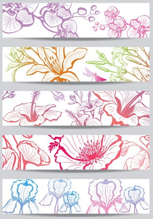Banners with flower Vector
