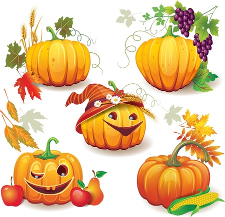 chestnut: Autumn still life with pumpkins Illustration