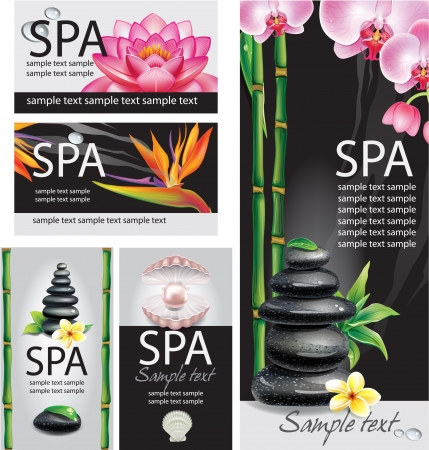 spa stones: SPA concept Illustration