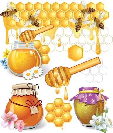 miel de abeja: Miel