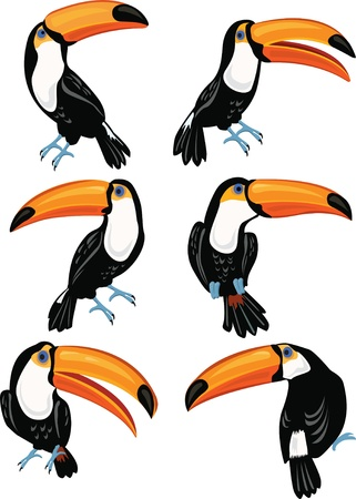 Set of toucans Stock Illustratie