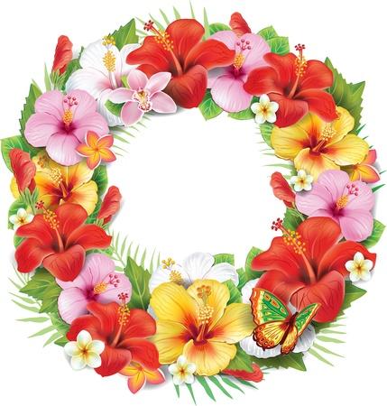 熱帯の花の花輪