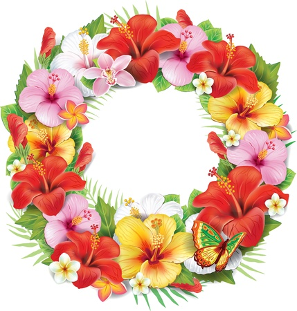 red hibiscus flower: Wreath of tropical flower