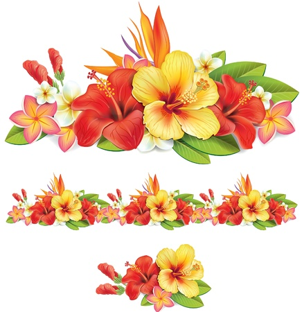 hibiscus flowers: Garland of of tropical flowers Illustration