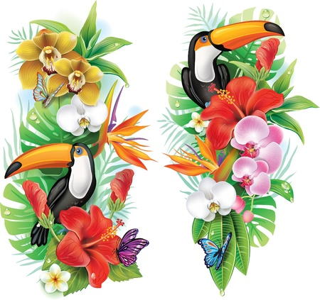 birds of paradise: Tropical flowers, toucan and a butterflies