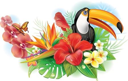 ave del paraiso: Red hibiscus, el tucán y flores tropicales