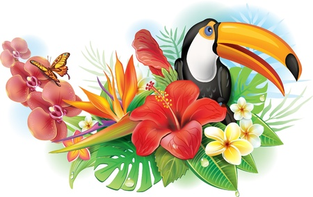 bloom bird of paradise: Red hibiscus, toucan and tropical flowers