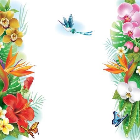 Border from tropical flowers and leaves