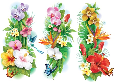 Arrangement from tropical flowers and leaves Illustration