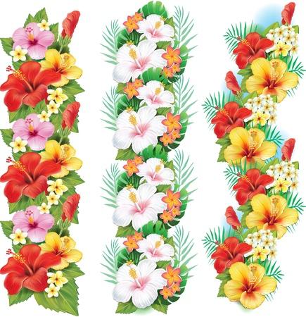 ハイビスカスの花の花輪  イラスト・ベクター素材