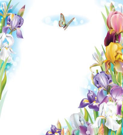 iris: Frame with Iris flowers