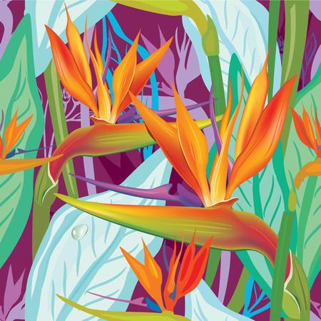 bloom bird of paradise: Seamless floral pattern with Strelitzia