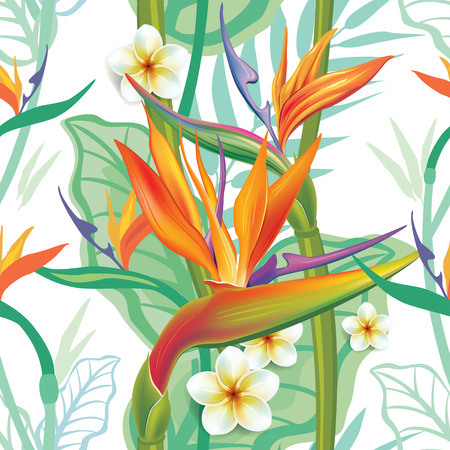 bird of paradise: Seamless pattern with Strelitzia