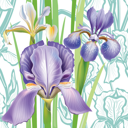 flower arrangement: Seamless floral pattern with irises