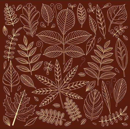 botany: Background of outline leaves