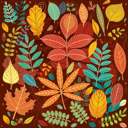 autumn leaves background: Background of autumn leaves