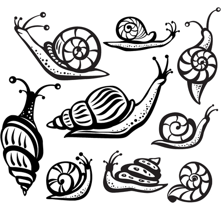 Set of black and white snails