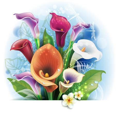 lily leaf: Bouquet of Calla lilies