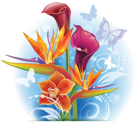 strelitzia: Bouquet of Strelitzia and Calla flowers