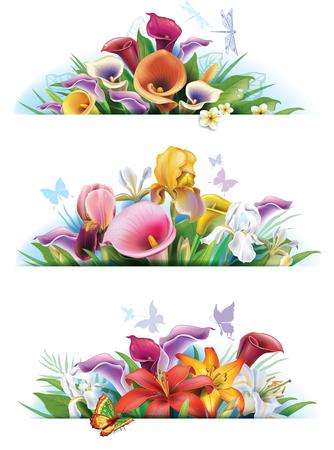 flor de lis: Fije las banderas con las flores Vectores