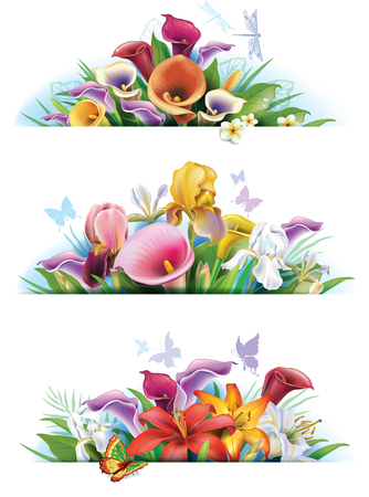 lily: Set banners with flowers