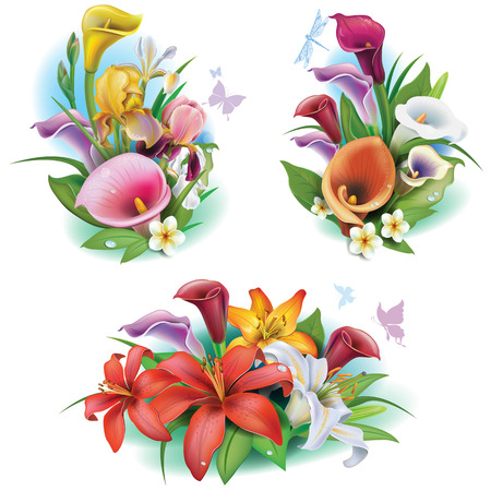 tropical flowers: Arrangement from tropical flowers Illustration