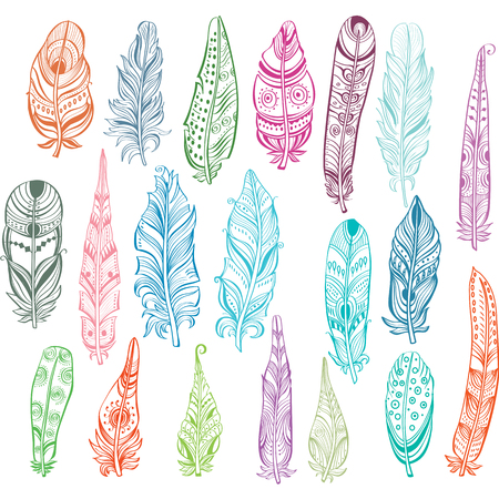 fastening: Set of feathers