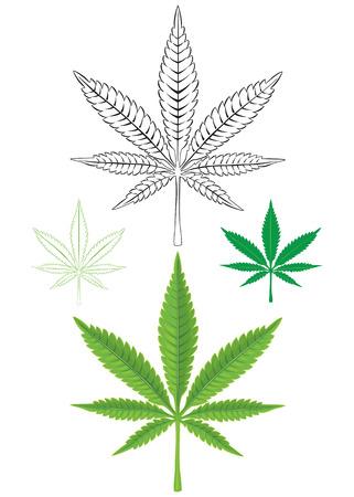 Cannabis Marijuana Leaf