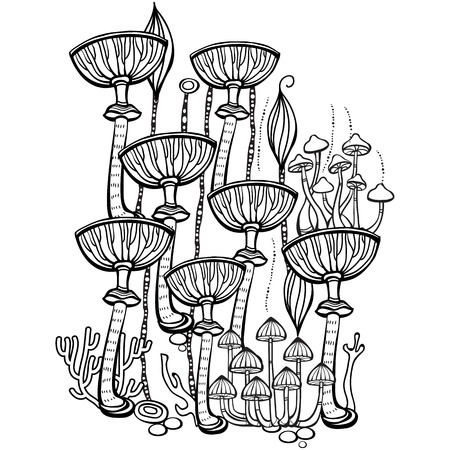 book: Coloring book page for adult with mushrooms Illustration