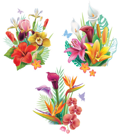 Set of arrangements from tropical flowers