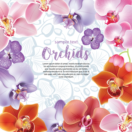florists: Greeting card with orchids flowers Illustration