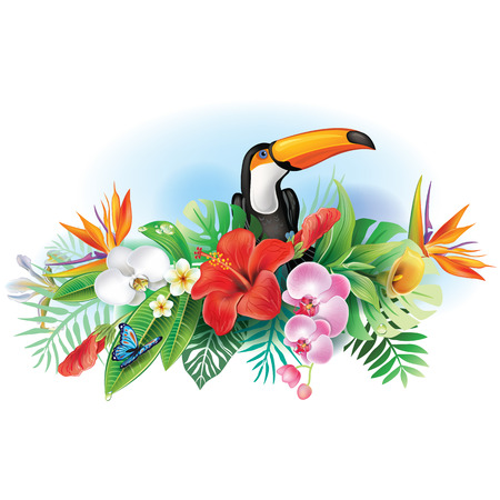 bloom bird of paradise: Toucan and tropical flowers